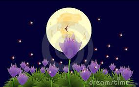fiore e luna