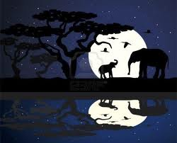 madri di notte