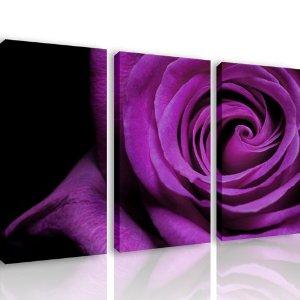 nero e viola 1
