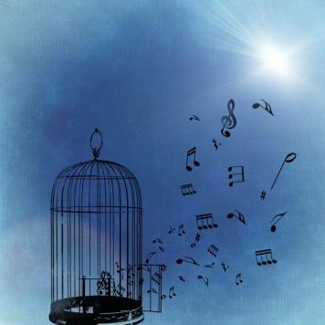 music-786131_960_720