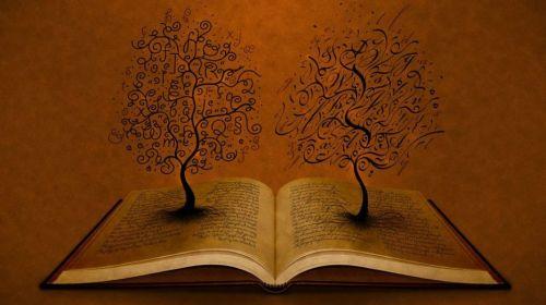 libro-consapevole